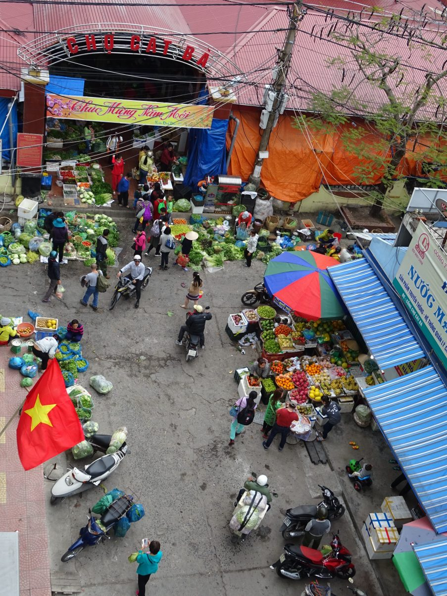Discover what two Vegans learned after a year living in Hanoi!
