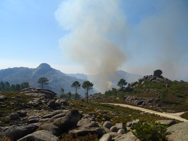 A Brush With Fire at Peneda-Gerês National Park