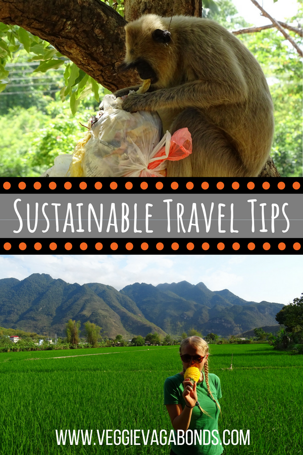 A Whole Bunch of Sustainable Travel Tips from Two Tree Hugging Vegans