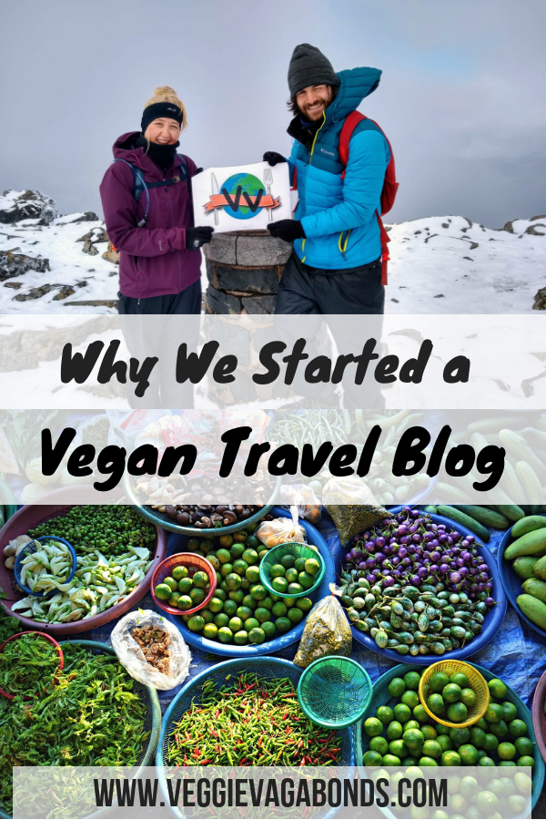 Why we started a vegan travel blog