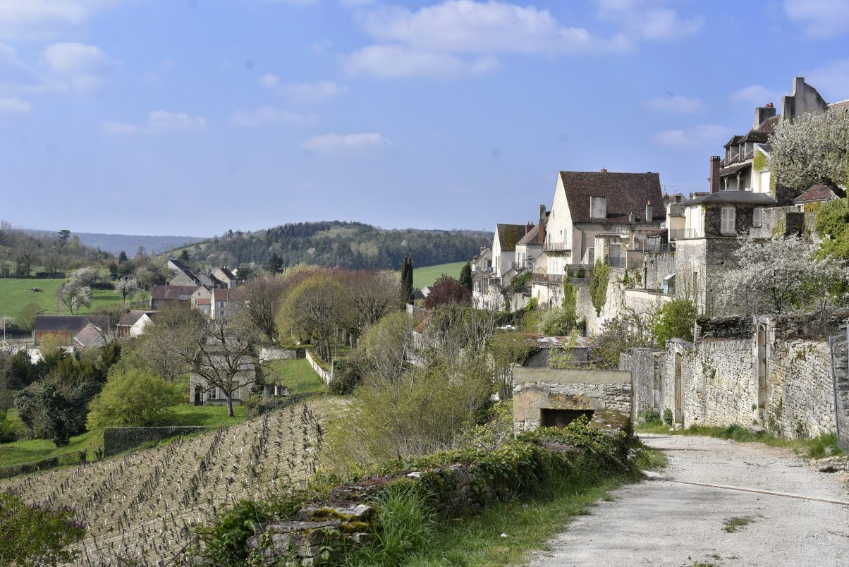 Views of vineyards that surround Vézelay