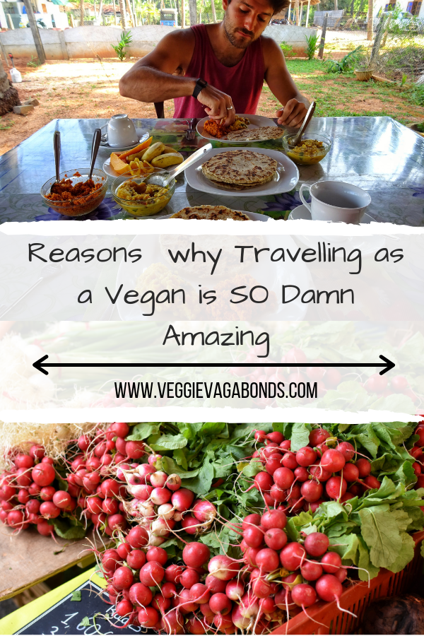 Why it's so Damn Amazing Travelling as a Vegan Pin