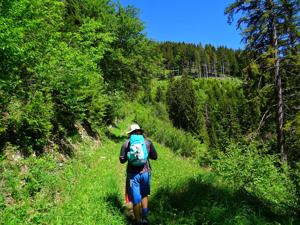 Beginning of Le Môle hike