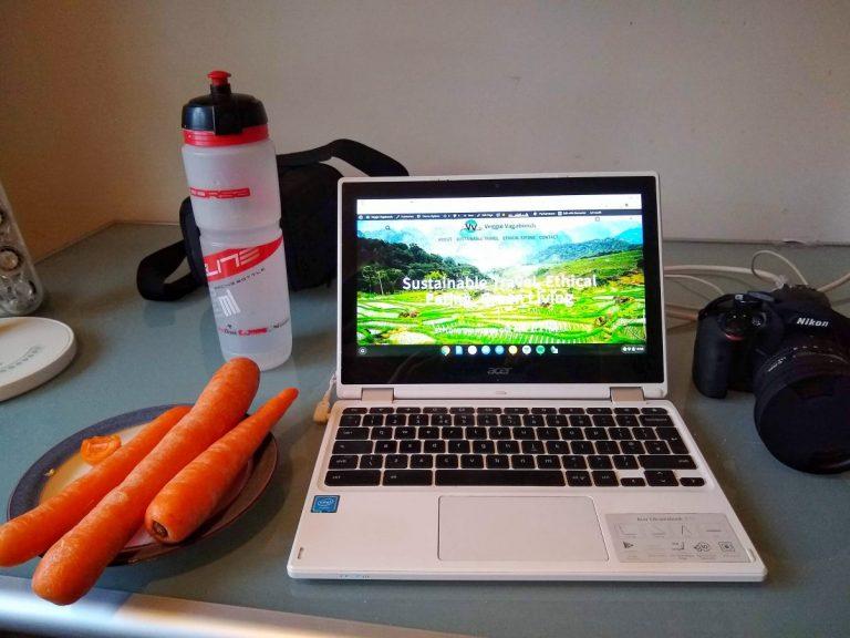 Vegan blogger desk