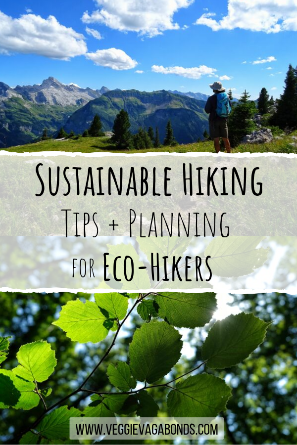 Sustainable Hiking Tips Pin