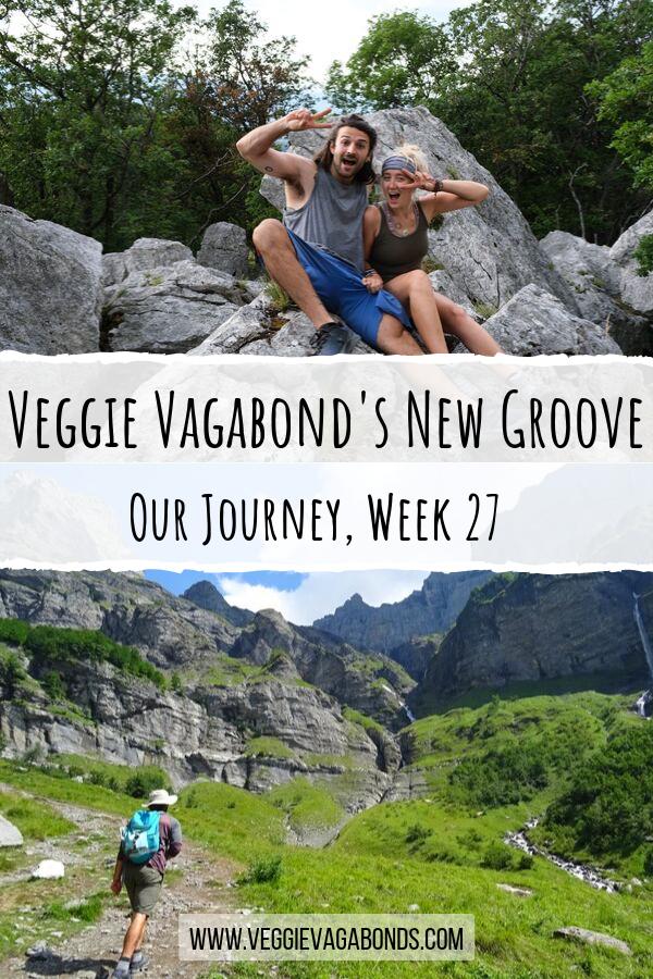Veggie Vagabonds new groove pin