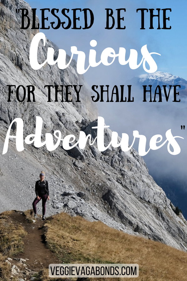 Blessed be the curious for they shall have adventures motivational travel quotes