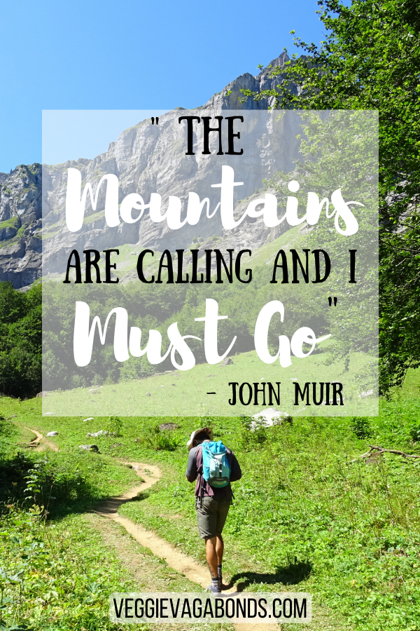 The mountains are calling and I must go, John Muir adventure Quote