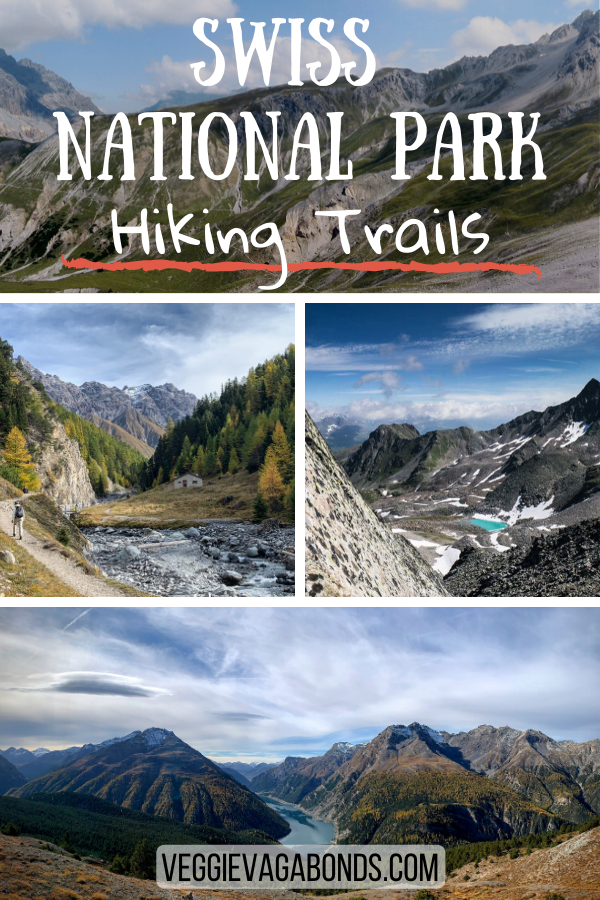 Swiss National Park Hiking Pin