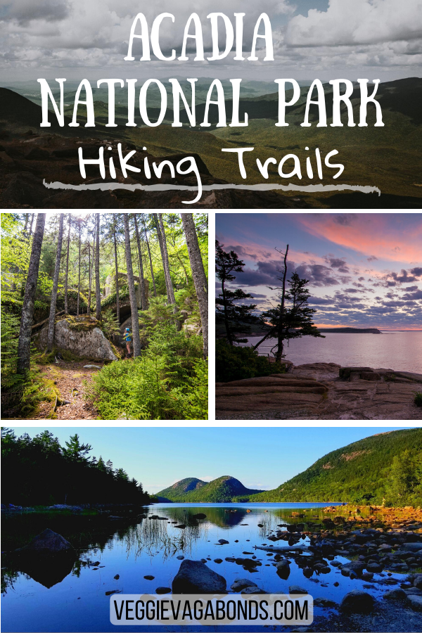 Swiss National Park Hiking Trails Pin