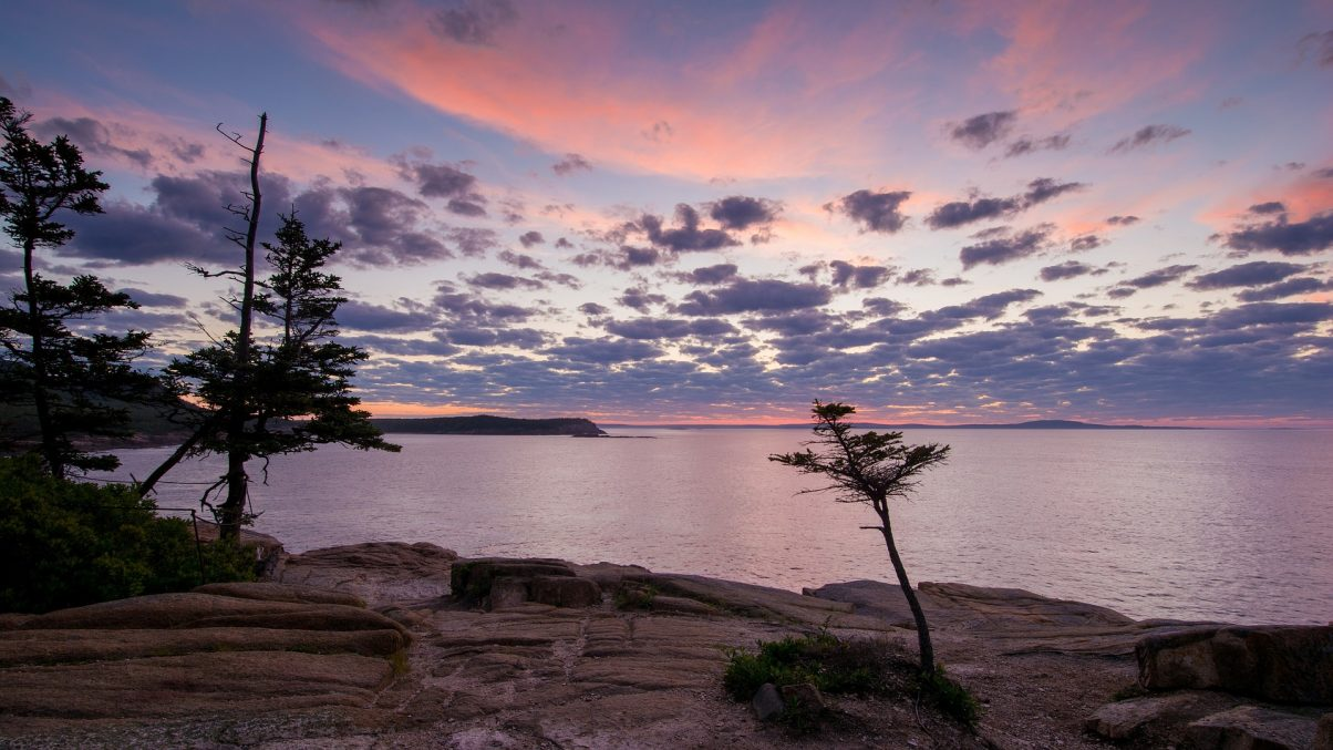 Sunrise on an Acadia National Park hiking trail