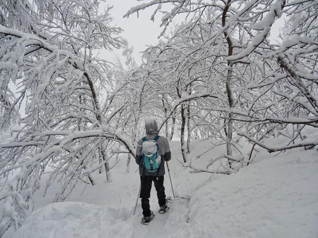 Man snowshoeing through mountains
