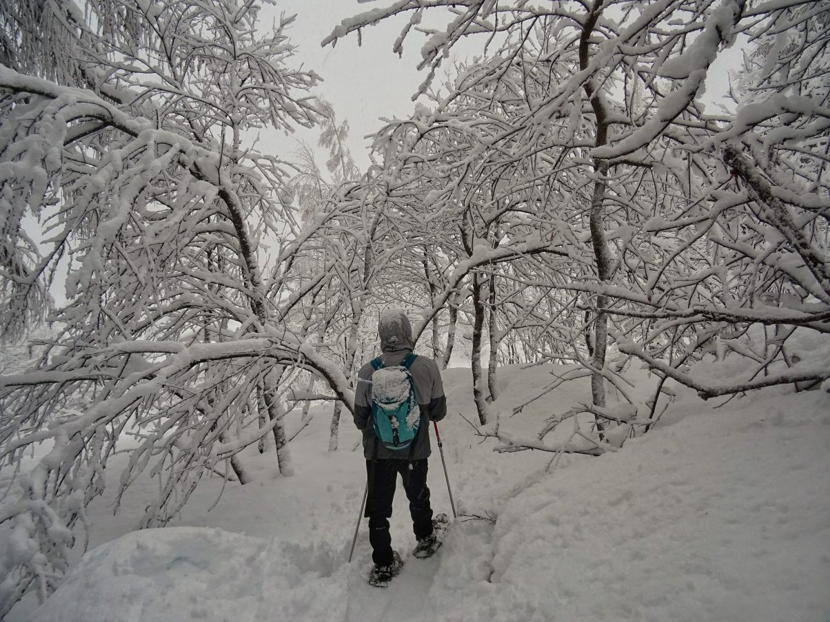 Man snow hiking