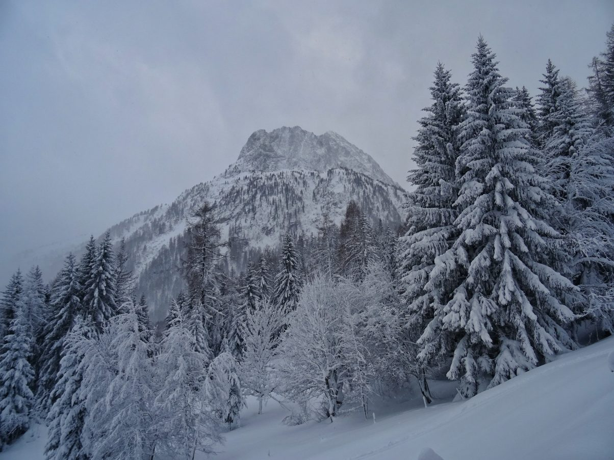 Vallorcine snowshoeing route