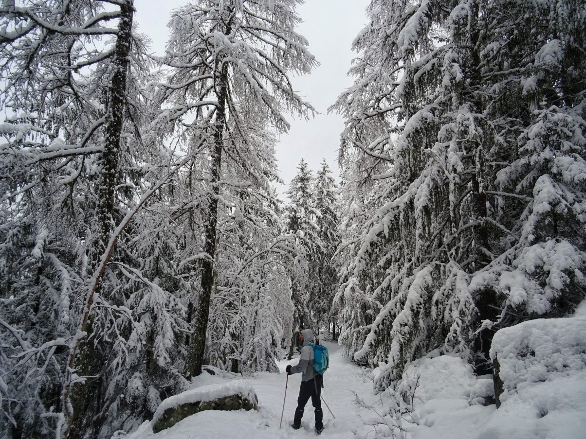 Man hiking in snow