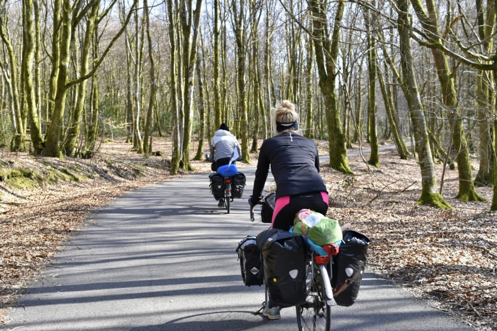 Couple cycle touring through the woods