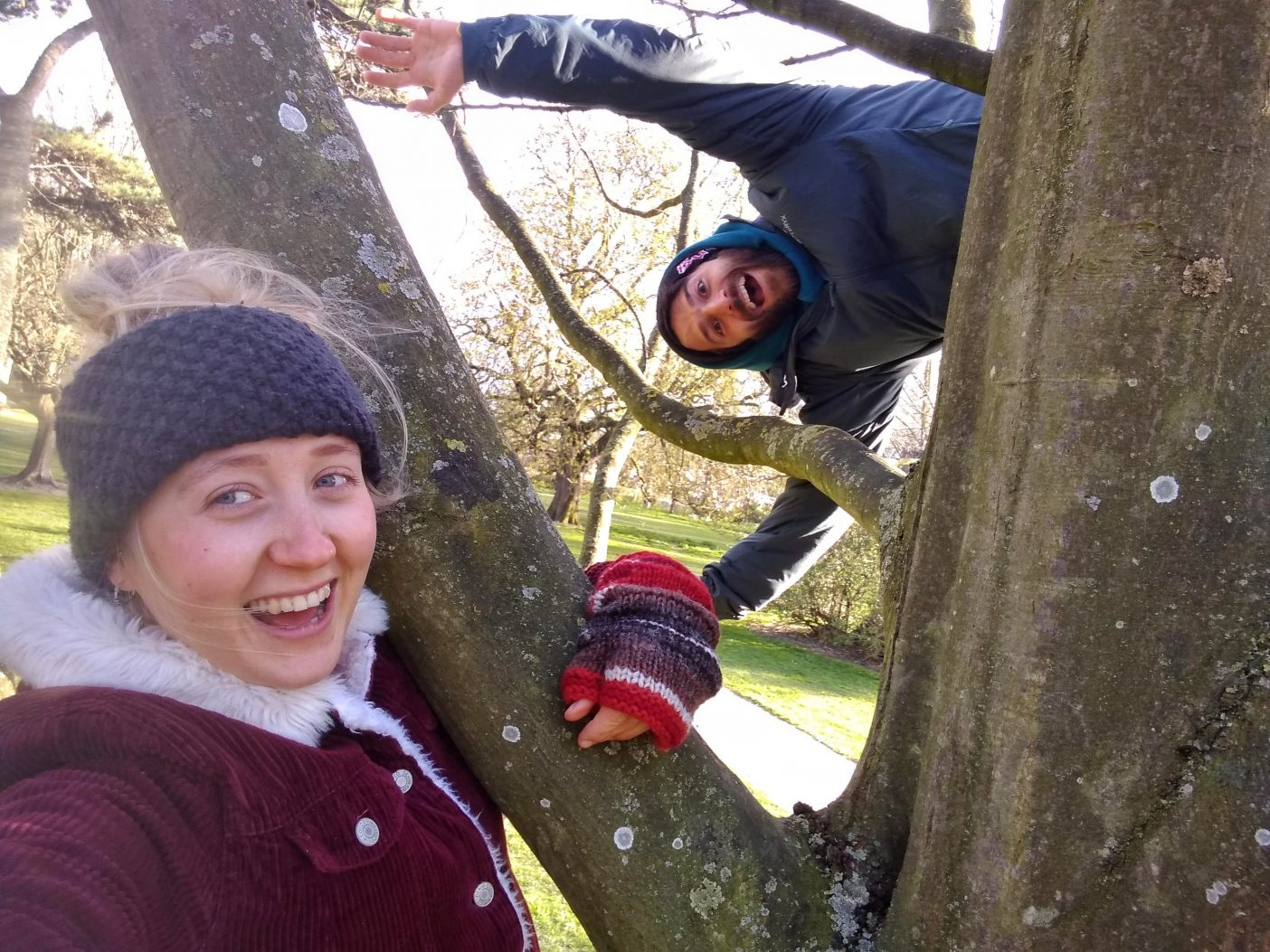 Couple climbing tree