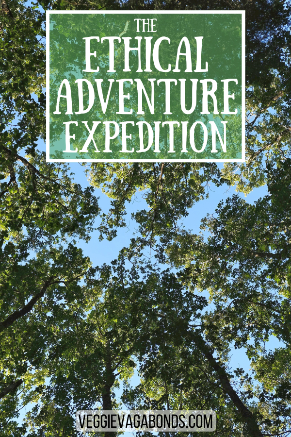 Ethical adventure expedition pin