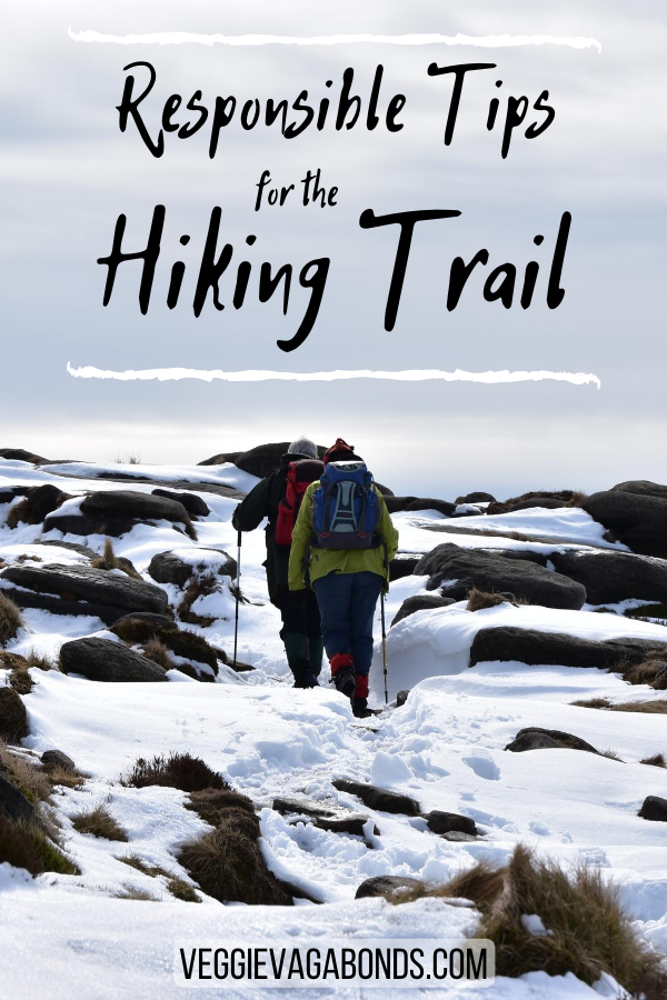 Sustainable hiking pin