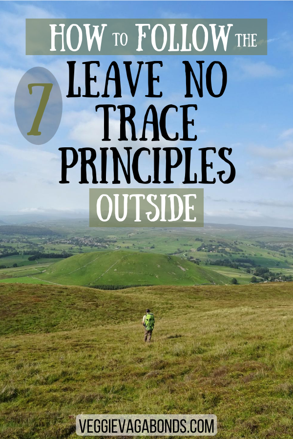 7 Leave No Trace Principles pin