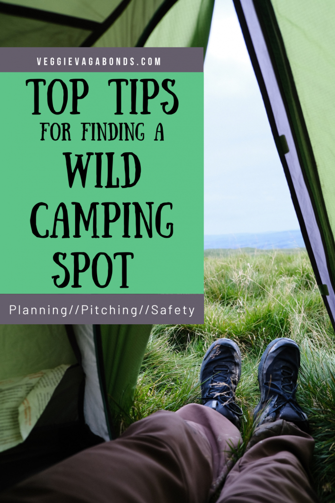 Wild camping spot pin