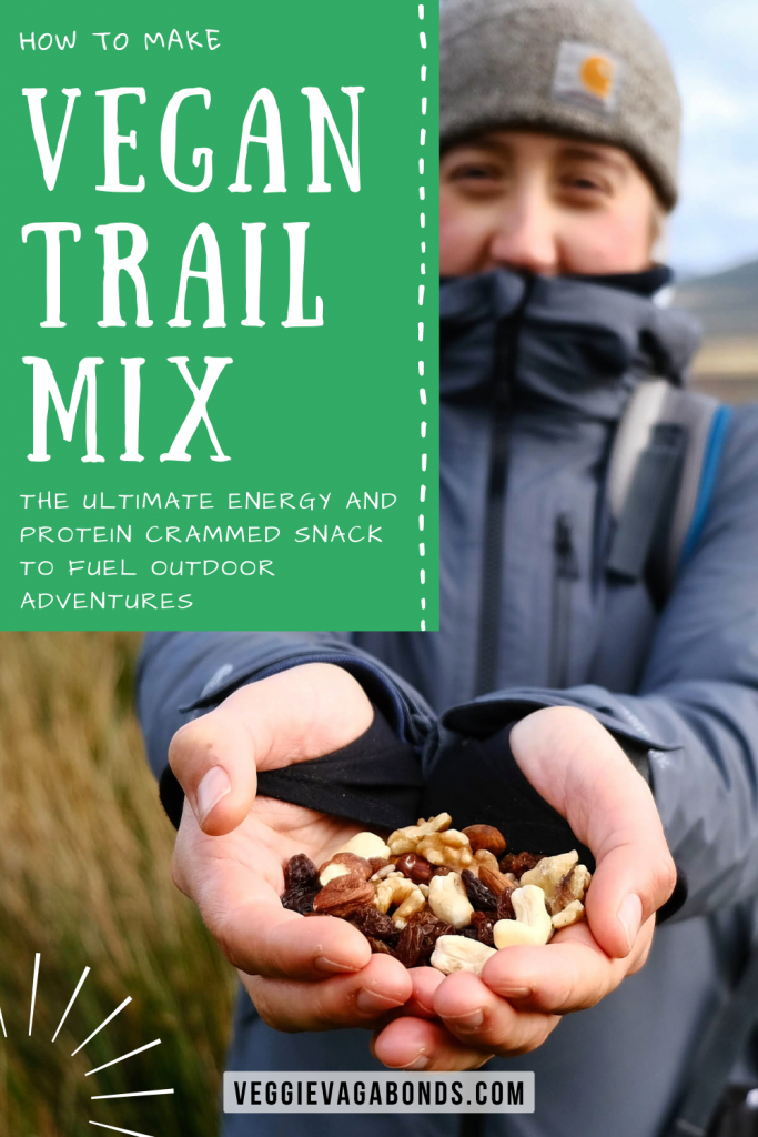 Vegan trail mix pin