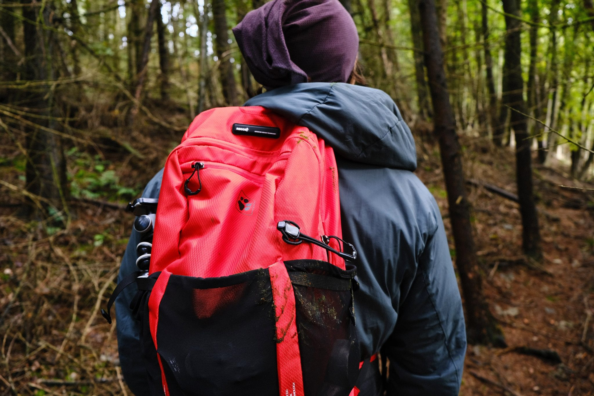 Man wearing wering vegan coat and sustainable rucksack in woods