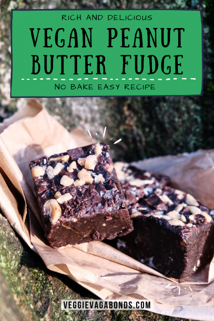 Vegan Peanut Butter Fudge Pin
