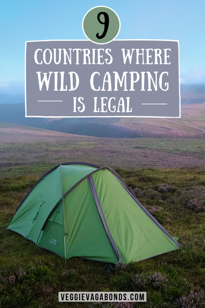 Camping in the wild pin