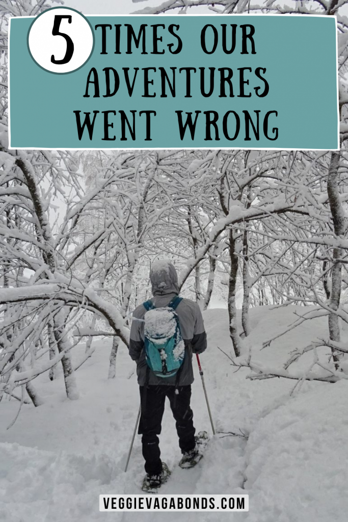 Adventures Went Wrong pin